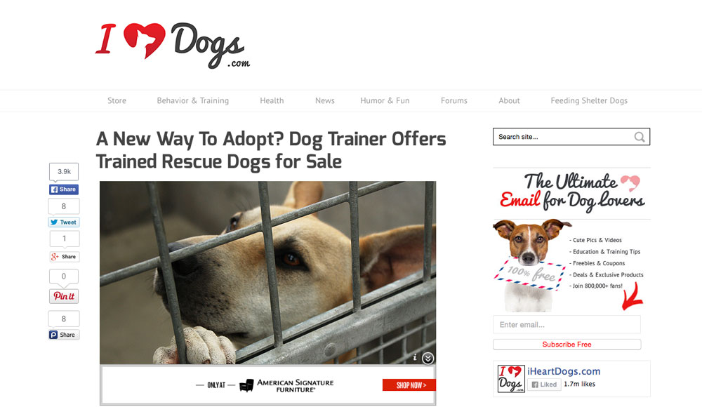 Saved and Trained on iHeartDogs | Kindred Spirits Dog Training.jpg
